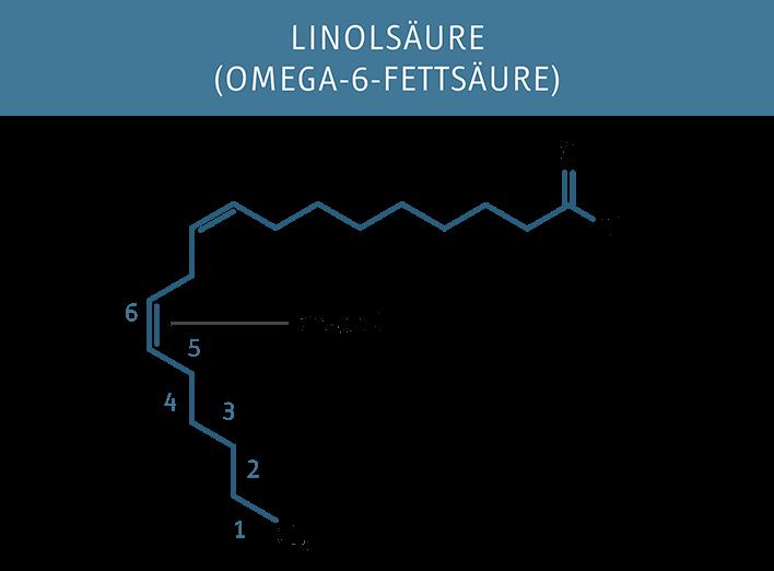 Molekuelstruktur der Linolsaeure (Omega-6)