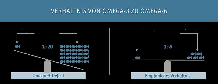 Verhältnis von Omega-3 zu Omega-6 heute und optimal